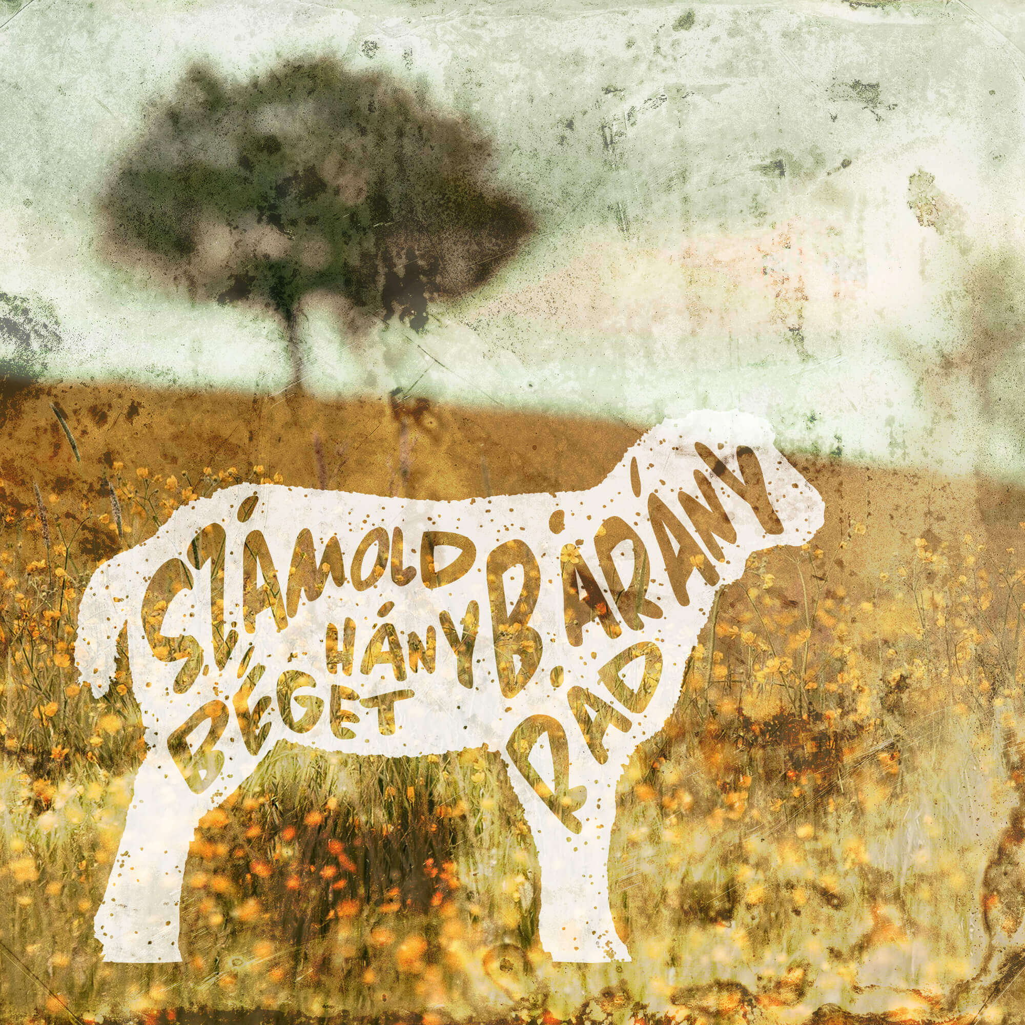 bárány mezőn, belehajlított felirattal